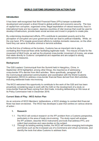 Customs Organization Action Plan
