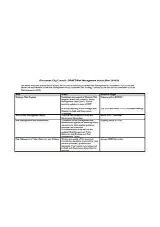 Draft Risk Management Action Plan