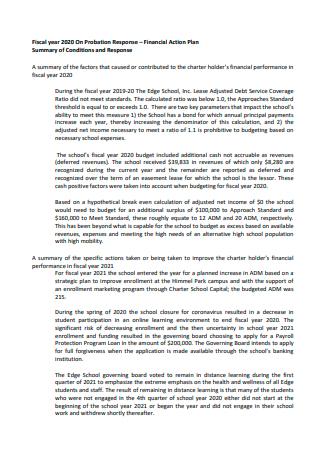 Financial Action Plan in PDF