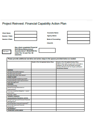 Financial Capability Action Plan