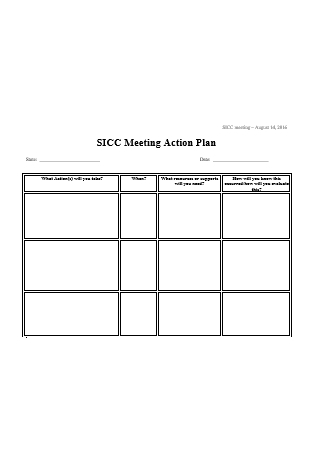 Meeting Action Plan in DOC