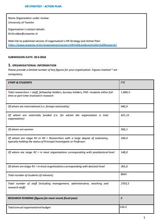 Organization Action Plan in PDF