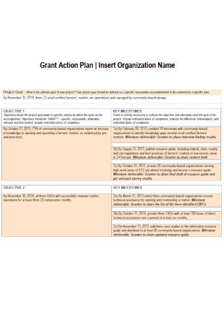 Organization Grant Action Plan Template