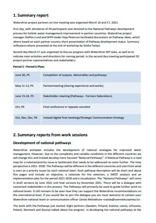 Partners Meeting Summary Report