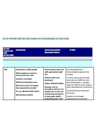 Printable Nursing Action Plan
