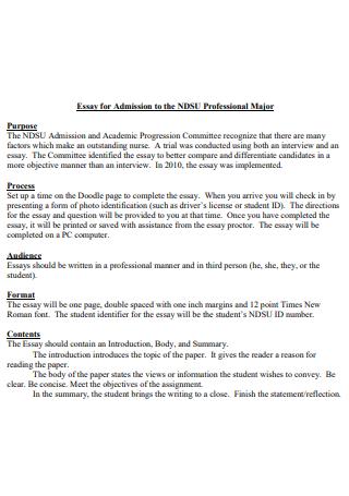 Professional Major Admission Essay