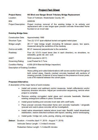 Project Fact Sheet Template