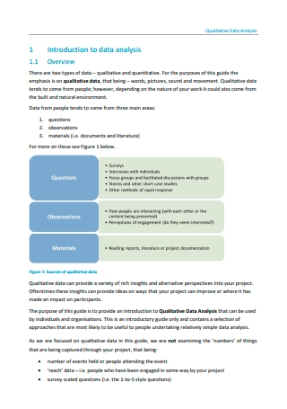 Qualitative Data Analysis Format