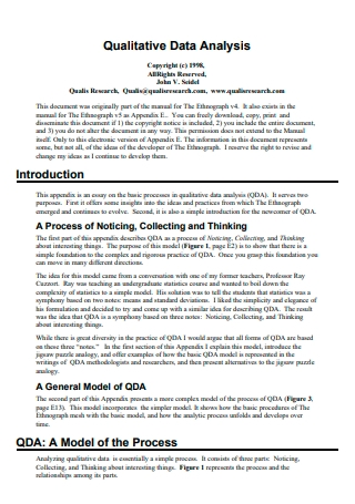Qualitative Data Analysis Template