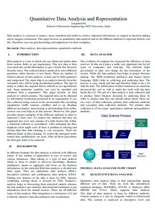 Quantitative Data Analysis and Representation