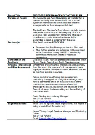 Risk Management Action Plan Format