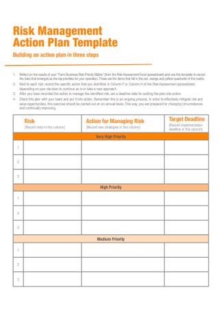 Risk Management Action Plan Template