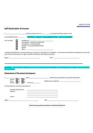 Self Declaration Income Statement