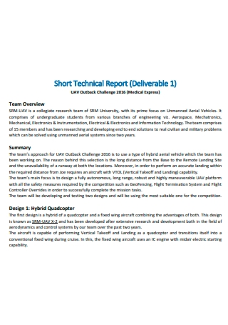 Short Technical Report Template