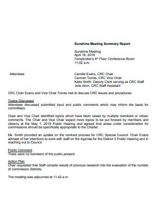 Sunshine Meeting Summary Report
