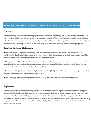 Visible Learning Action Plan