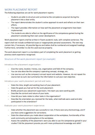 Work Placement Report