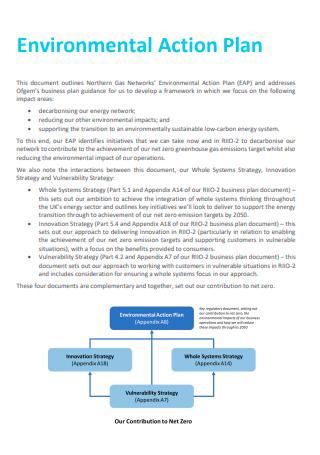 Basic Environmental Action Plan