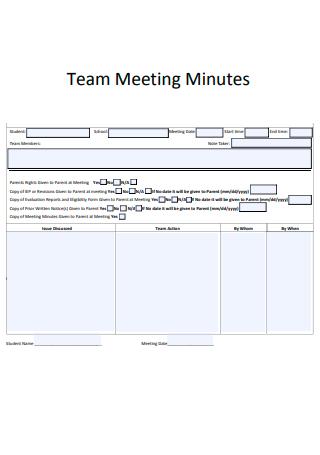 Basic Team Meeting Minutes