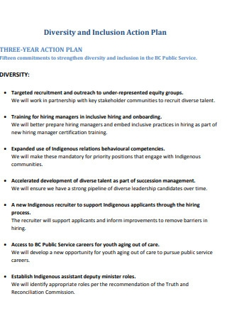 Diversity Three Year Action Plan