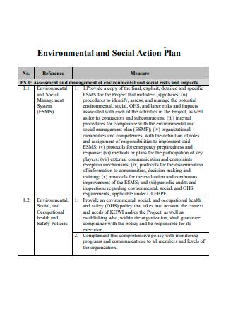 Environmental and Social Action Plan