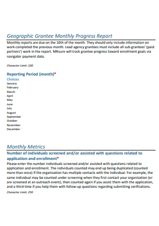 Geographic Grantee Monthly Progress Report