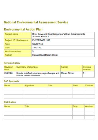 National Environmental Assessment Service Action Plan