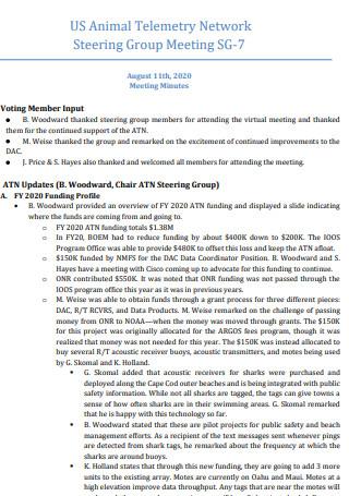 Network Steering Group Meeting Minutes