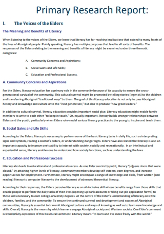 Primary Research Report Template
