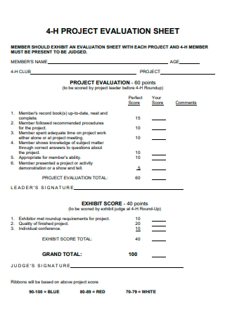 Project Evaluation Sheet