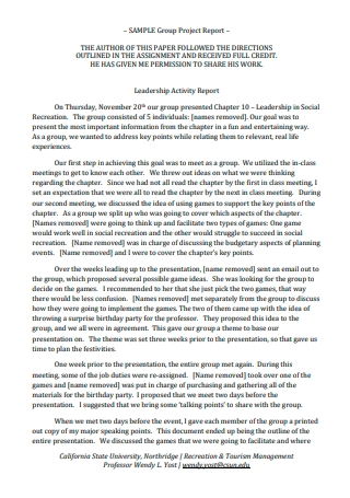 Sample Group Project Report