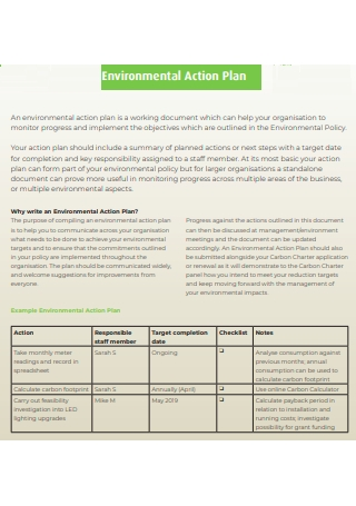 Standard Environmental Action Plan