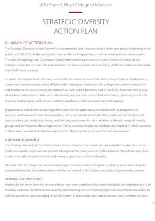 Strategic Diversity Action Plan