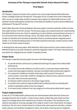 Summary of Therapy Action Research Project Final Report