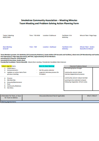 Team Meeting Minutes and Problem Solving Action Planning Form