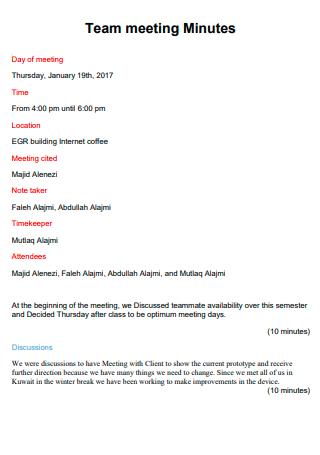 Team Meeting Minutes in PDF