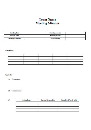 Team Name Meeting Minutes