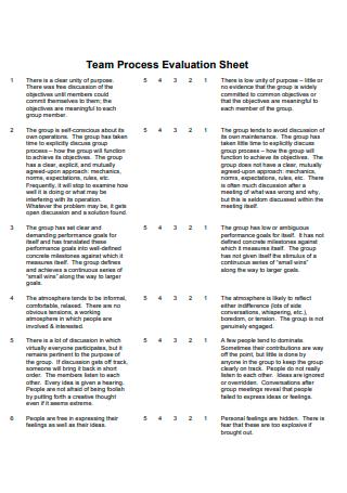 Team Process Evaluation Sheet
