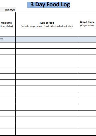 Three Day Food Log Spreadsheet