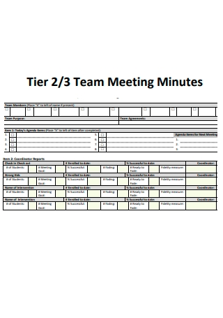 Tier Team Meeting Minutes