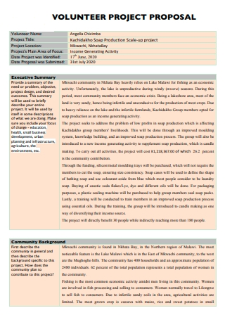 Volunteer Project Proposal in PDF
