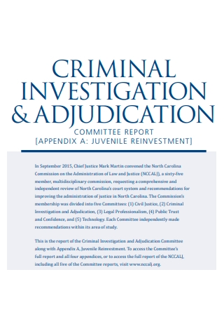 Criminal Investigation Committee Report