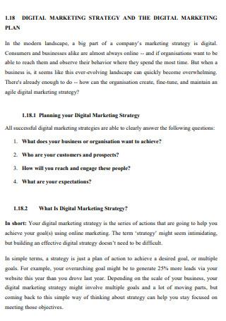 Digital Marketing Strategy and Digital Marketing Plan
