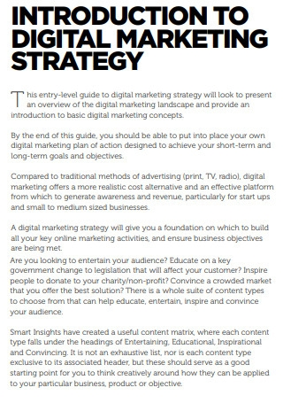 Introduction to Digital Marketing Strategy