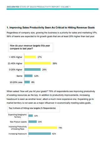 Sales Business Productivity Report